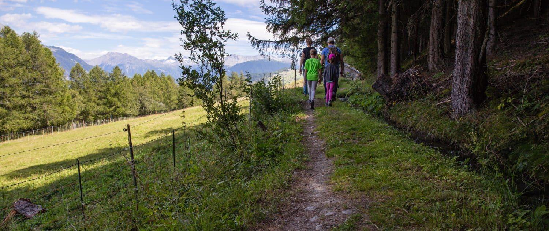 Mountain Bike Eischoll Valais