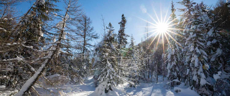 Eischoll-Schnee-Winter-1024x630
